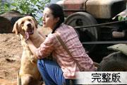 20061007_yahoo